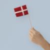 kay bojesen flag til fanebærer